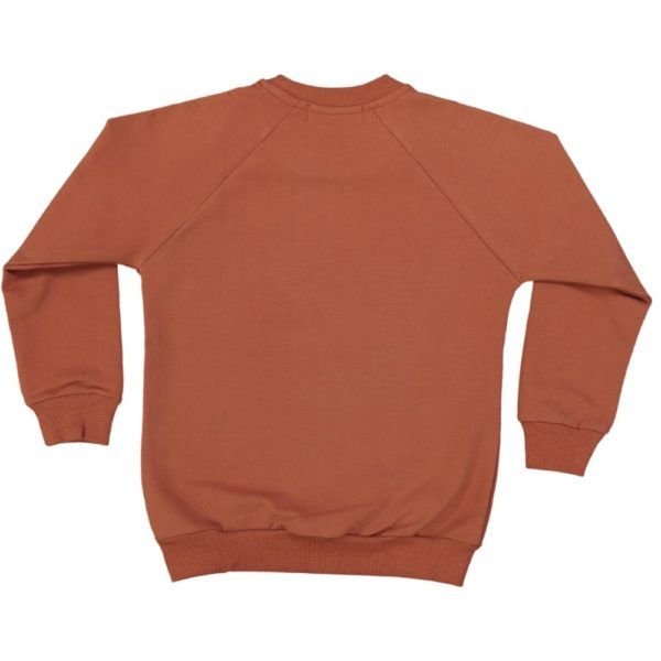 organic cotton kids sweater, terracotta colour with little emboidery