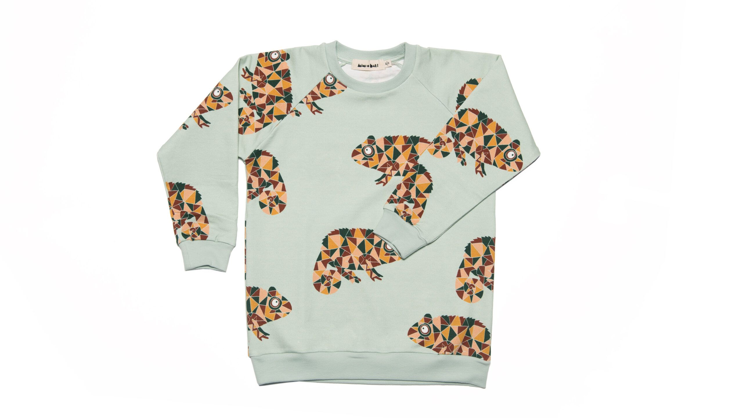 Kids Sweater with chameleons